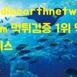 middleearthnetwork.com 먹튀검증 1위 먹튀폴리스-1
